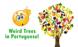 plants trees brazilian portuguese