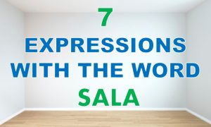 expressions with the word sala