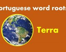 Portuguese word root TERRA